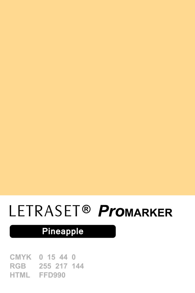 ProMarker Pineapple