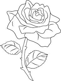Cinescopio coloring pages of a rose ~ Image result for rose line drawing | Desenhos bordados à ...