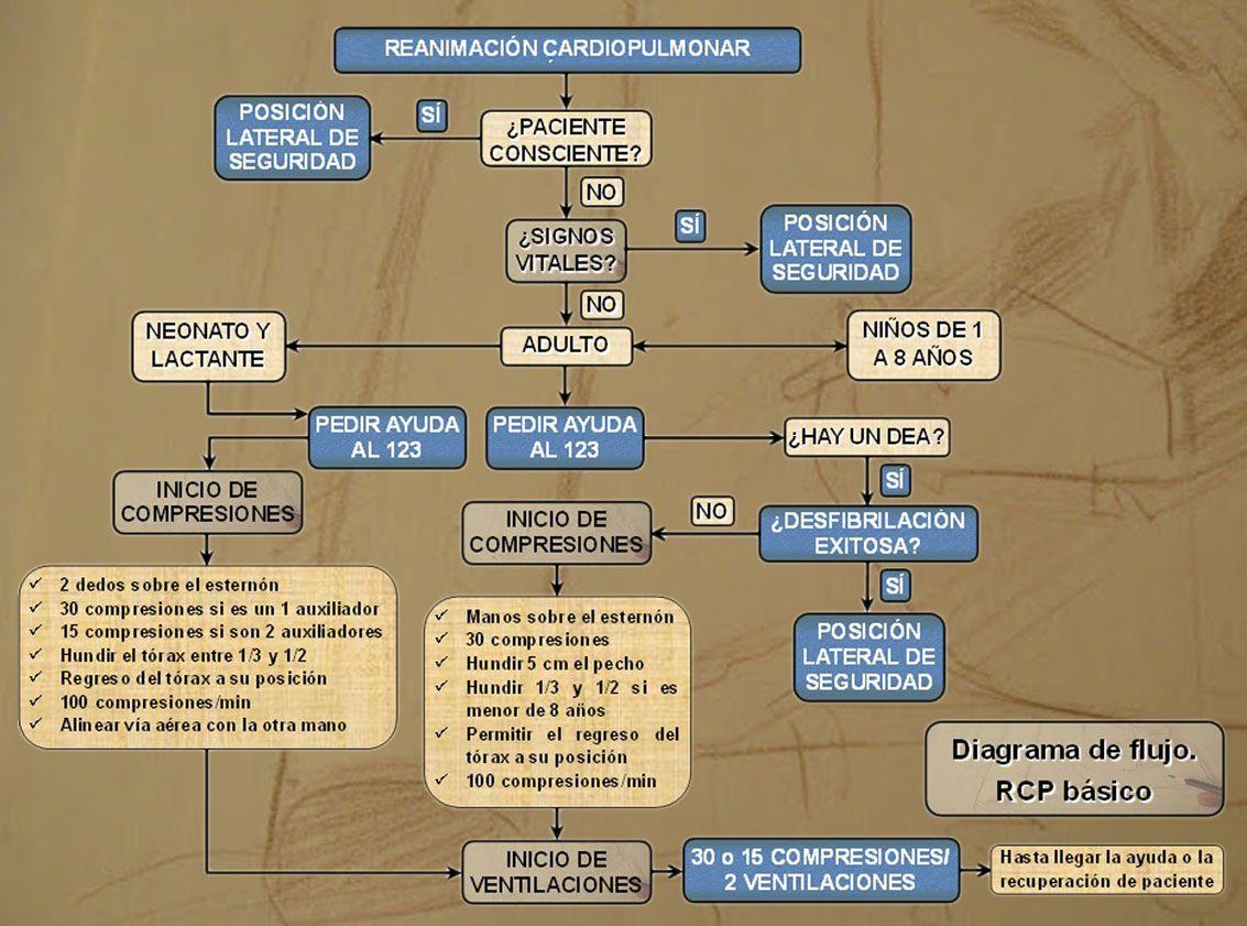 Diagrama de flujo. Primeros auxilios. RCP | S.O.S EMERGENCY ...