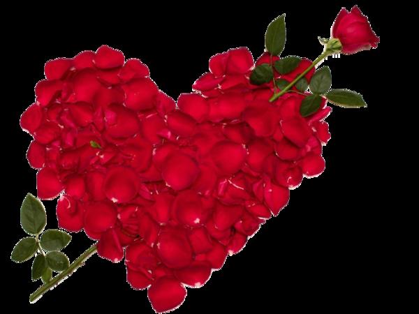 Epingle Par Claire Langevin Sur Coeur Pinterest Love Flowers