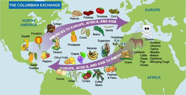 Exchange Of Plants Animals And Disease In The Columbian Exchange