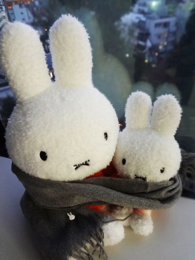 Miffy snuggle time.