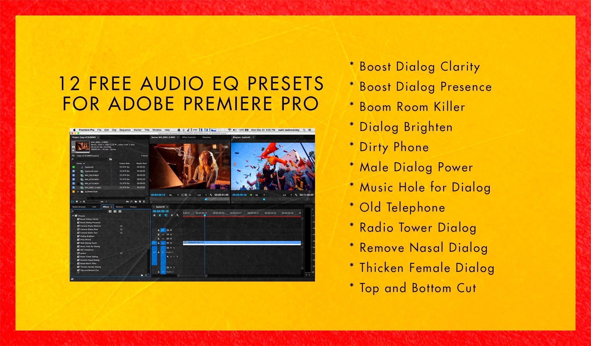 12 Free Audio Presets for Adobe Premiere Pro. http