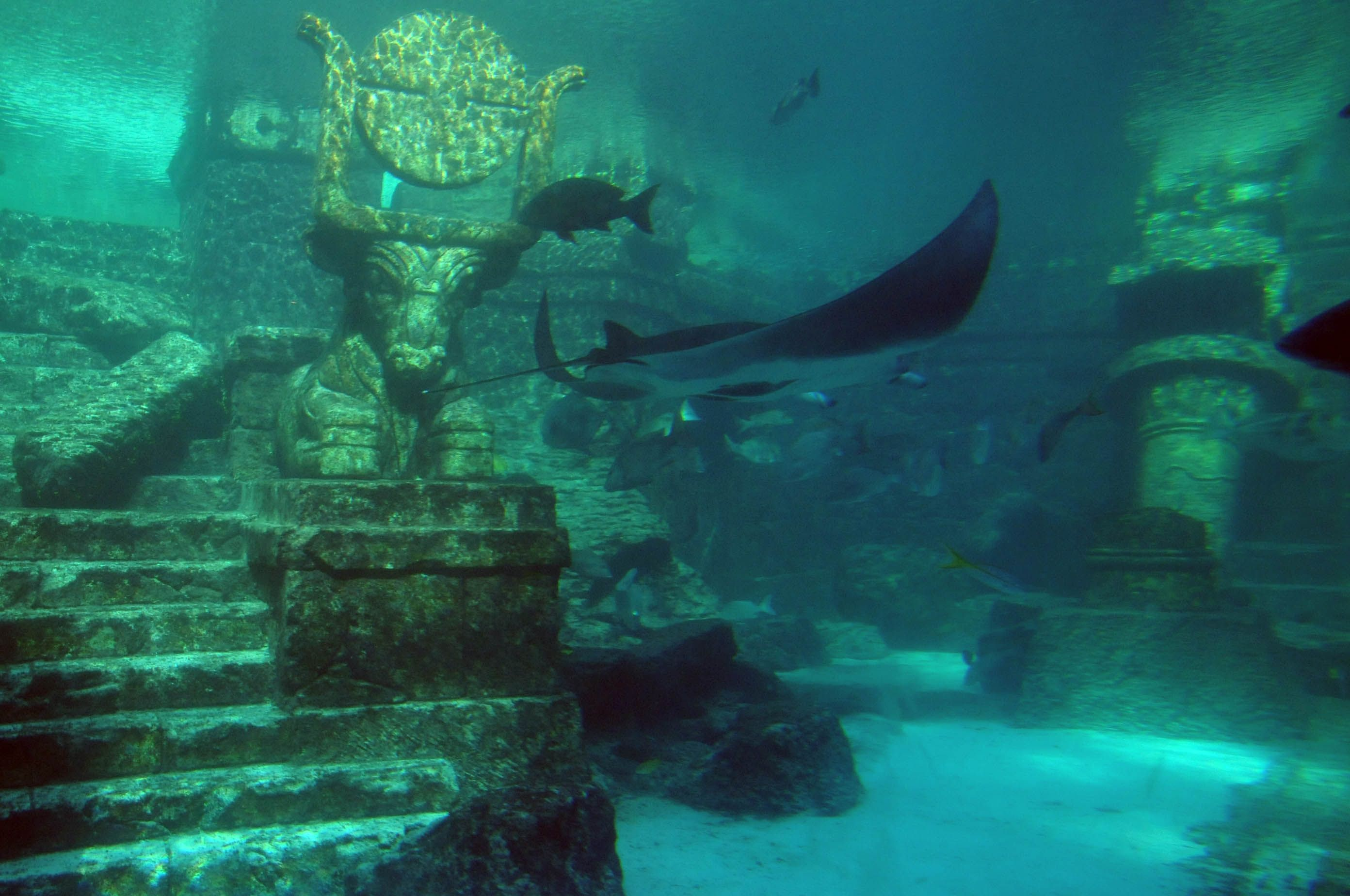 Dive Deeper Into An Ocean Of Awesome Things Underwater City Lost City Of Atlantis Sunken City