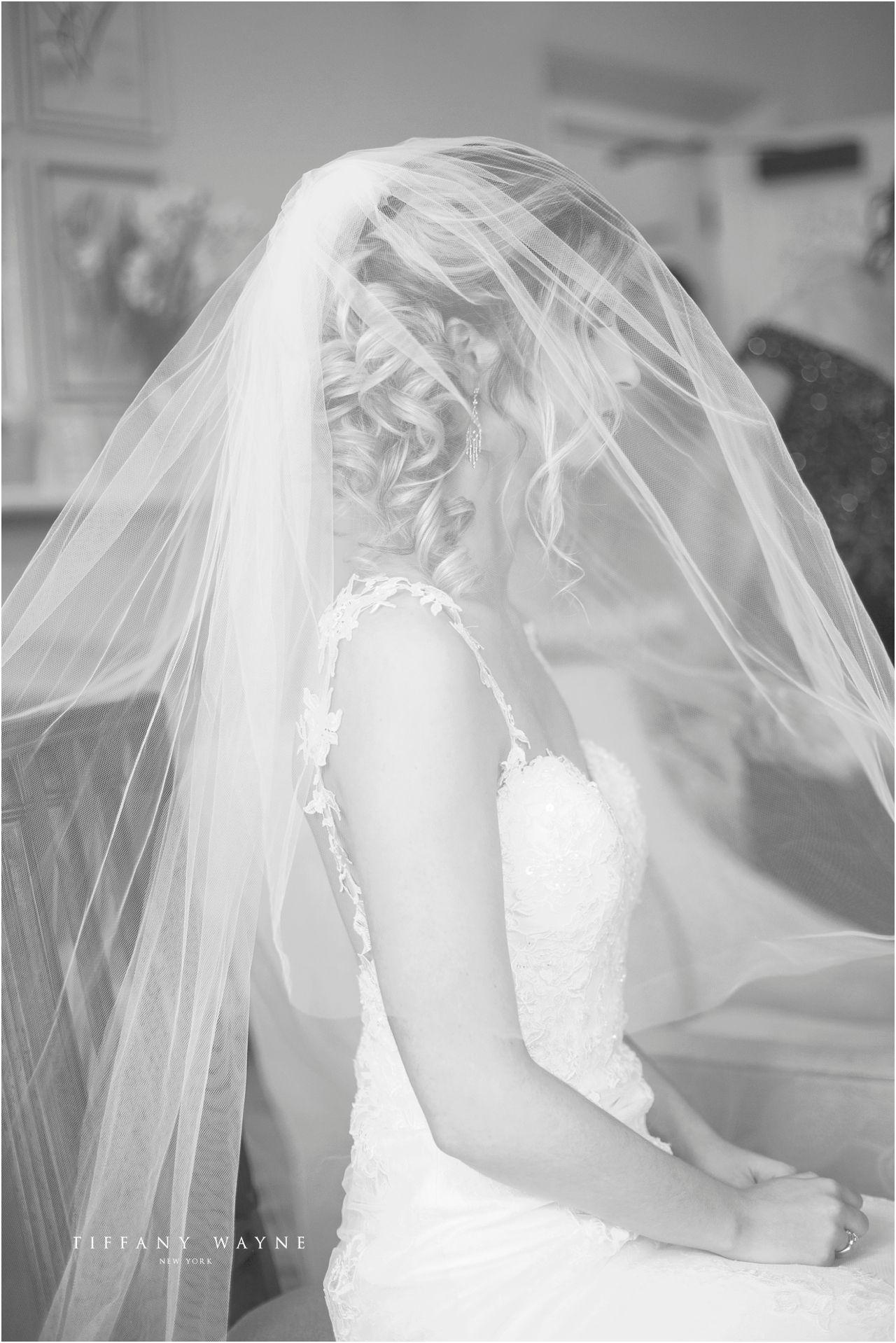Wedding veil photography wedding veil bridal portraits wedding