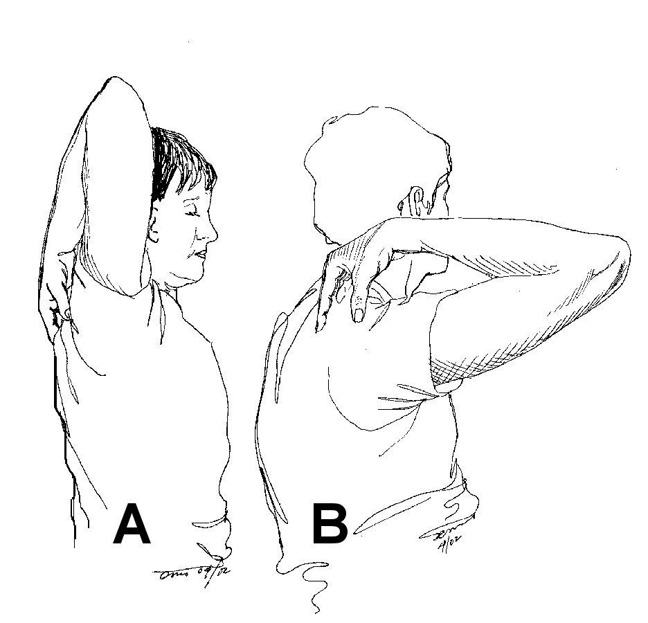 ROM shoulder tests This is the single most important test
