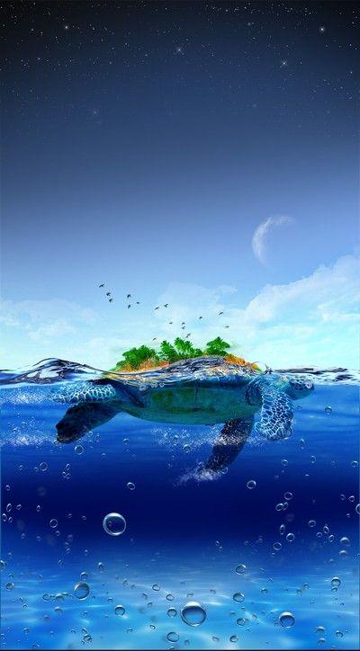 Остров черепахи — Бесплатные PSD-Файлы