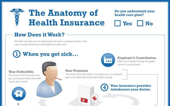 Infographic Anatomy Of Health Insurance Health Insurance Mother Health Health And Safety