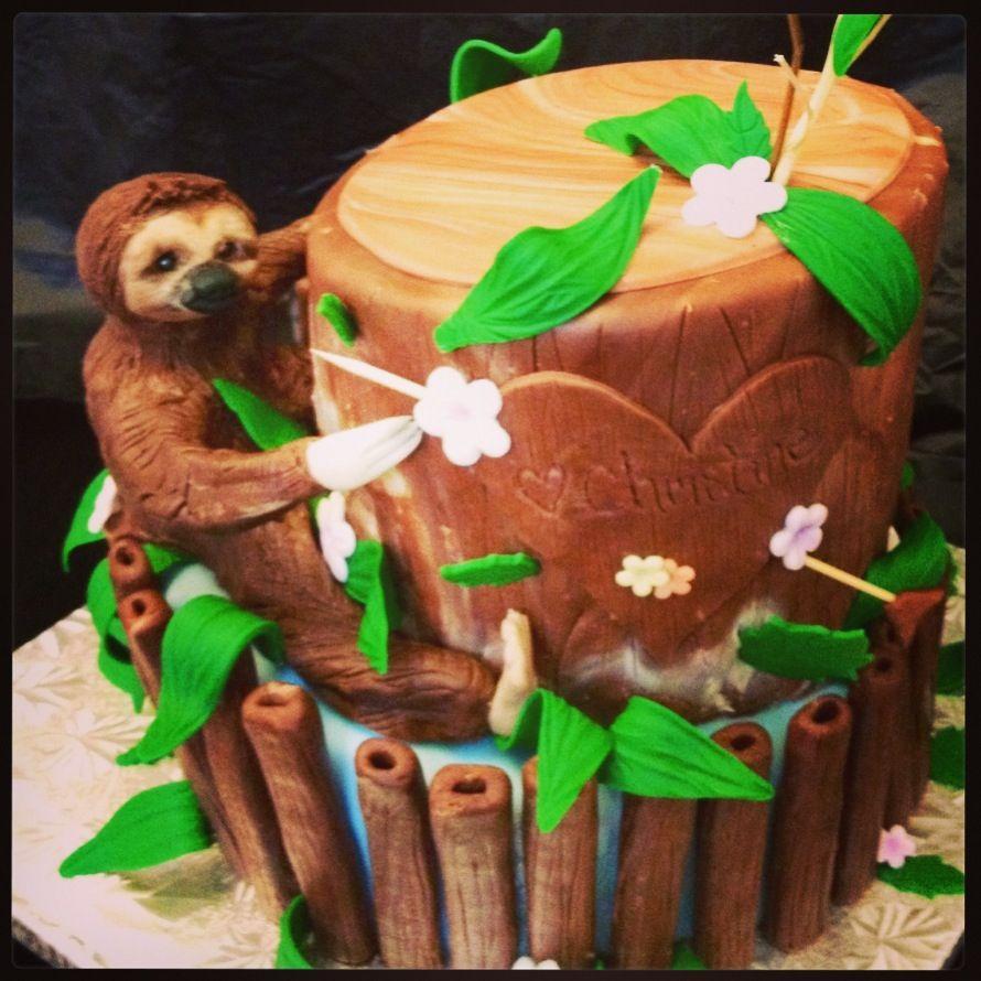 Sloth outdoorsy birthday cake  cakes  in 2019  Sloth