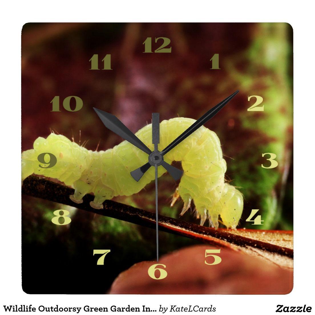 Wildlife outdoorsy green garden inchworm custom square wall clock wildlife outdoorsy green garden inchworm custom square wall clock amipublicfo Image collections