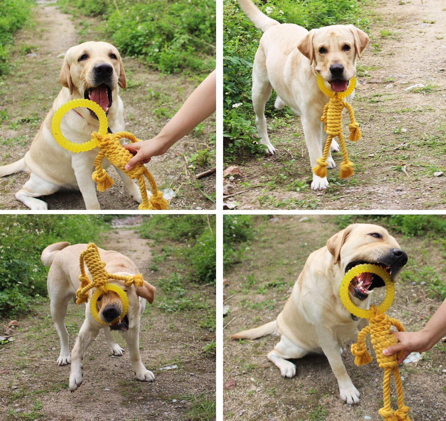 Loobani Dog Rope Toys For Aggressive Chewers And Tooth Cleaning