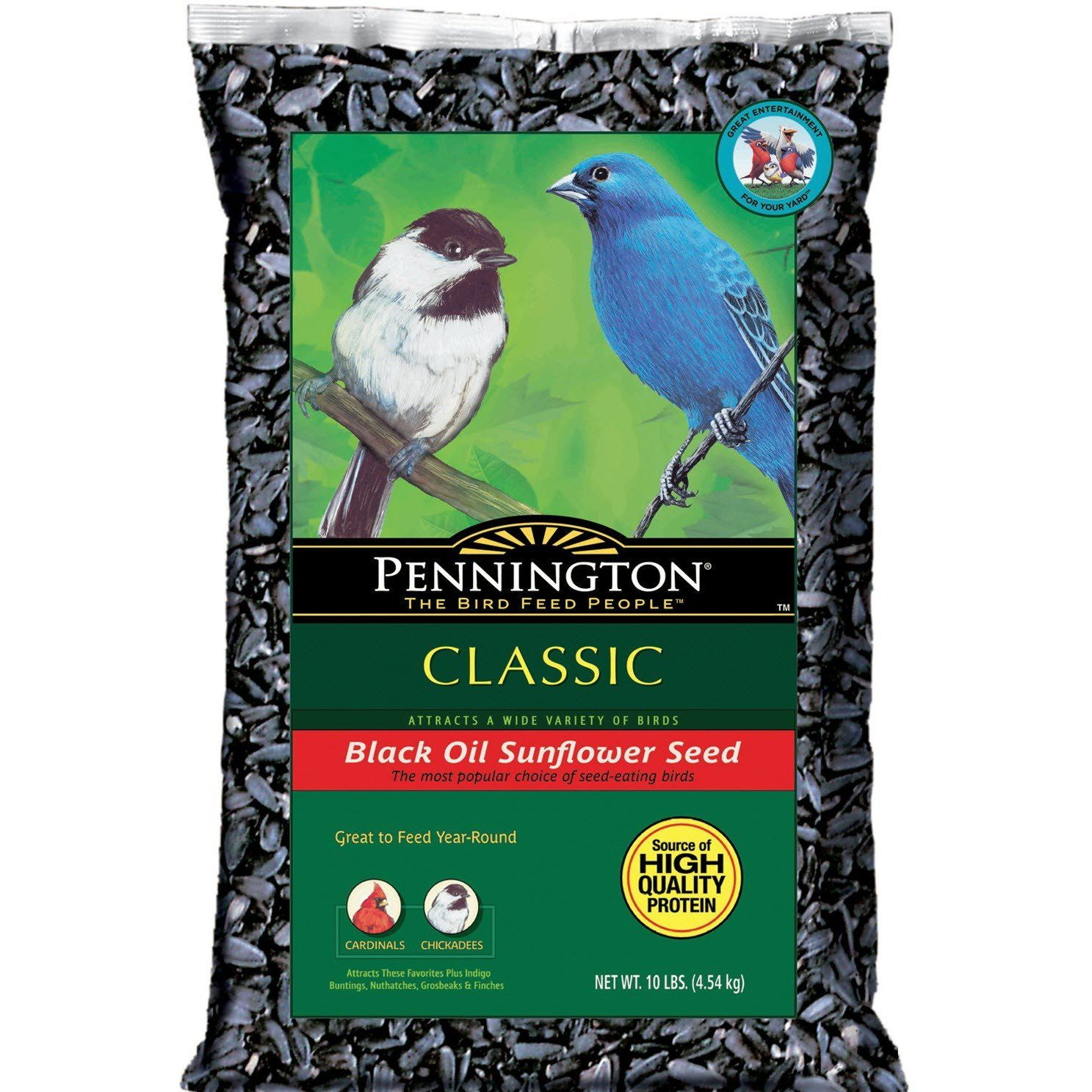 Pennington 10 Lb Sunflower Seed Sunflower Seeds For