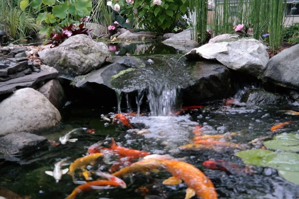 Delightful Waterfall Created By Living Water Landscape Service In Battle Creek, MI.