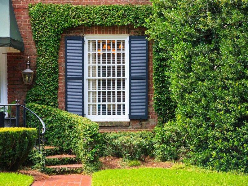 Landschaftsbau » 5 Tipps für den Sichtschutz im Garten \u2013 Zaun- und