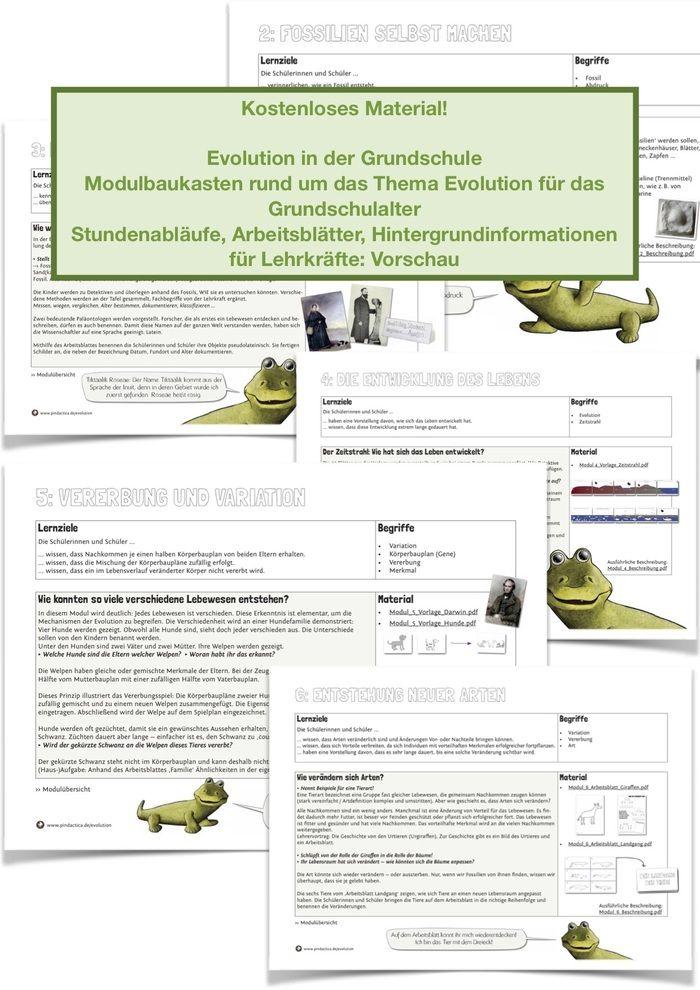 modulbaukasten zum thema evolution vorschau freebies kostenlose materialien evolution. Black Bedroom Furniture Sets. Home Design Ideas