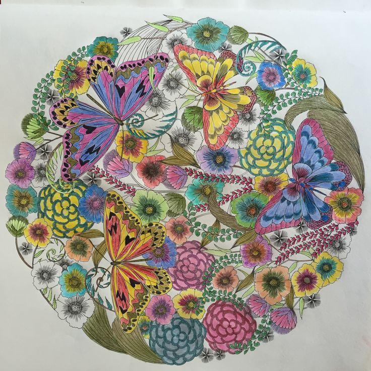 Millie Marota Butterfly MandalaAdult ColoringColoring BooksColouringAnimal KingdomJohanna