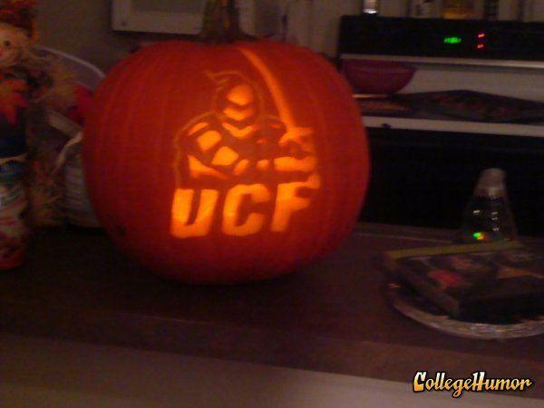 UCF knights pumpkin UCF KNIGHTS Ucf knights, Ucf college, Pumpkin