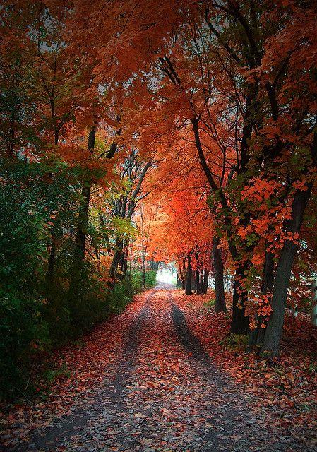 Wheaton, Illinois, US.