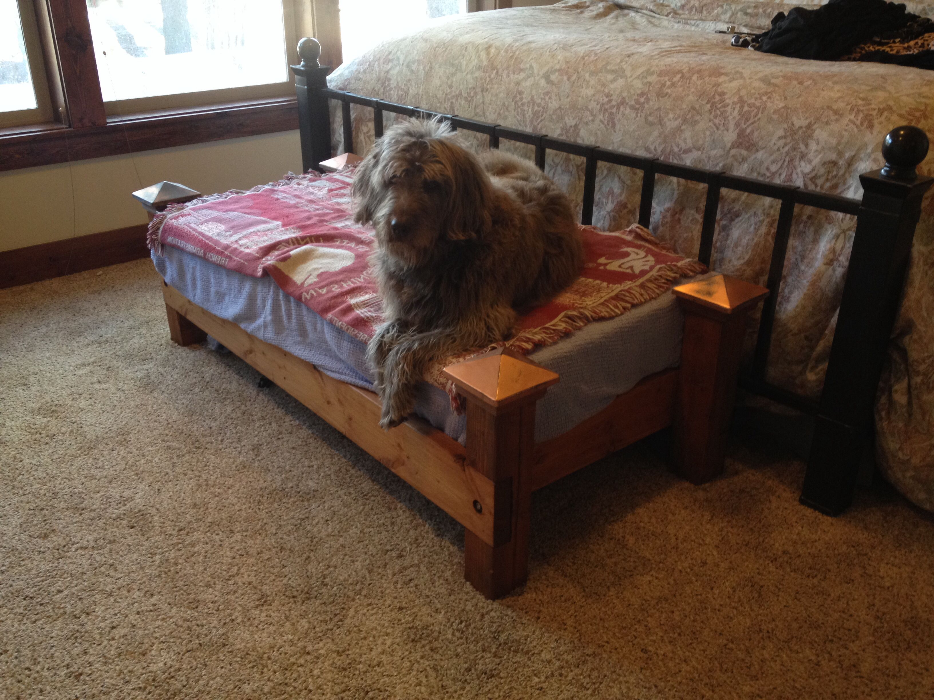 Crib mattress turned dog bed Crib mattress dog bed, Diy