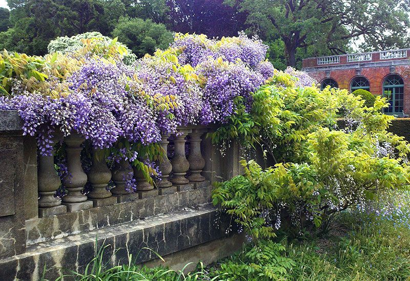 Filoli Gardens is an amazing place for ideas and
