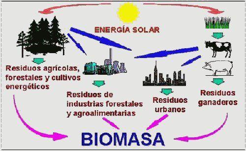 Proceso De La Biomasa Fuentes De Energia Renovable Energia Quimica Energia Renovable