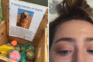 """People Are Crying Over This Adorably Sweet """"In Loving Memory"""" Tribute To A Dog"""