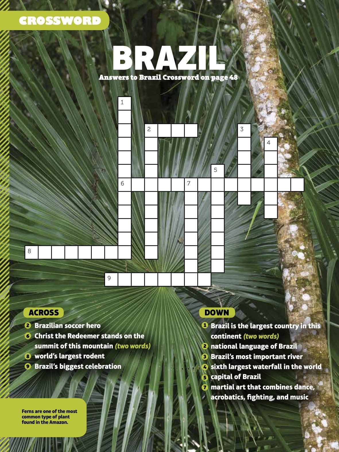 Brazil Themed Crossword Puzzle From Faces Magazine In