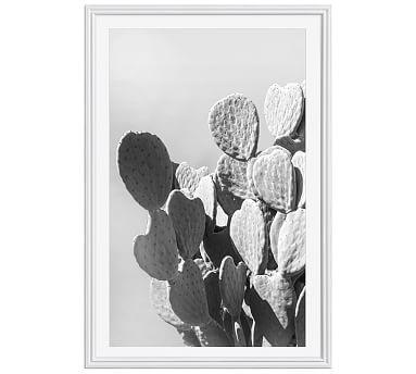 Monochrome Desert Cactus Framed Print by Jane Wilder, 28 x 42 ...