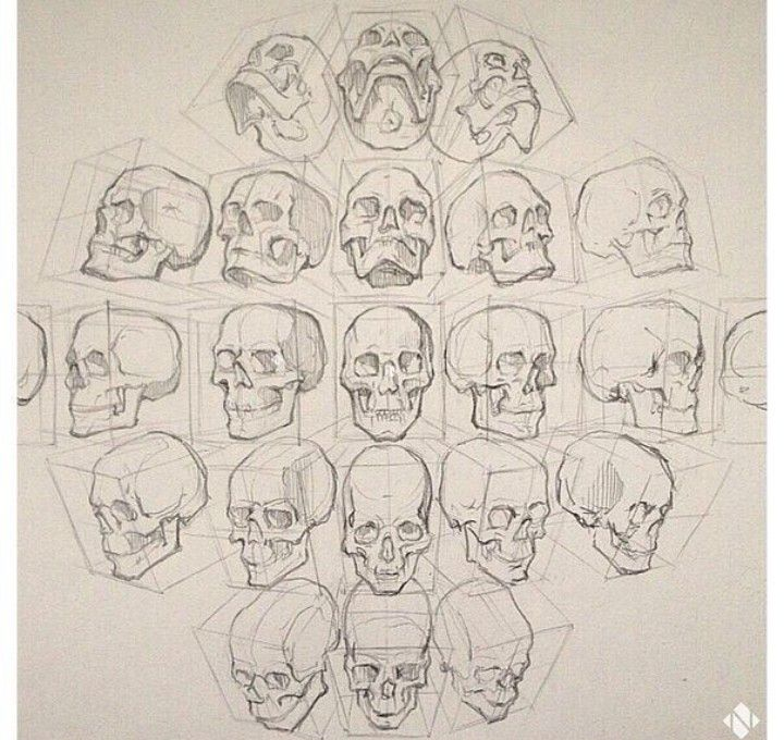 Character Design Head Shapes : Figure drawing head positions ̃ ̮̮̃ ۶ character