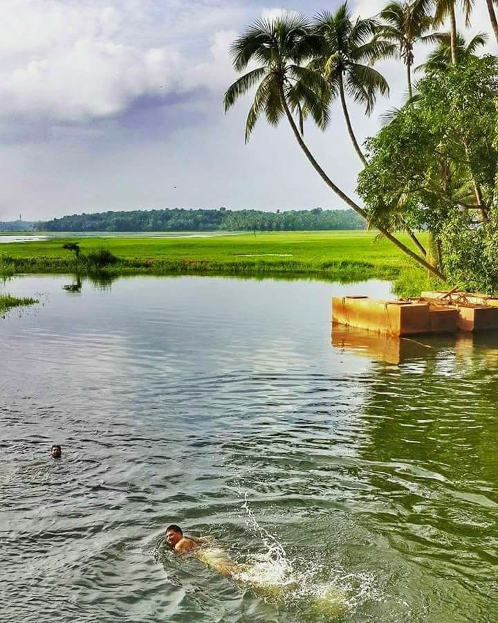 Natural Beauty Good Morning Kerala God S Own Country Beautiful Nature Nature Natural Beauty