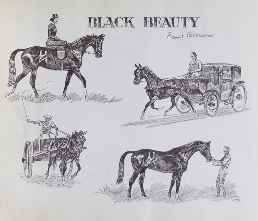 Black Beauty  Told In Short Form And In Pictures By Paul Brown