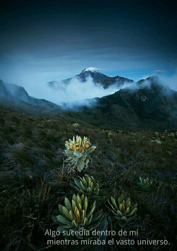 Volcán Tolima  -  Colombia #Wanderlust #America #36