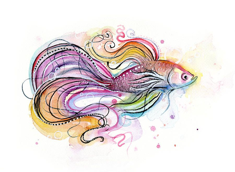 Watercolor fish paintings betta fish watercolor painting for How to paint a fish