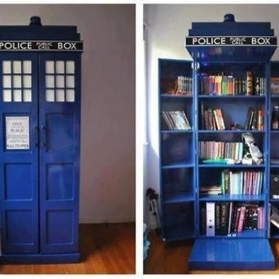 TARDIS...well it could be anything! Liquor cabinet, pantry ...