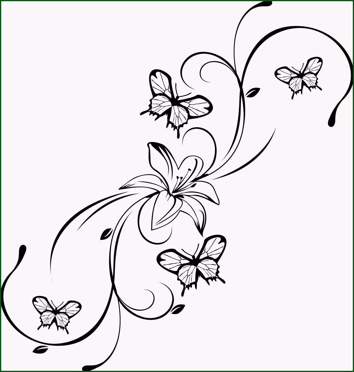 Malvorlagen Blumen Ranken Flower Drawing Butterfly Tattoo Butterfly Drawing