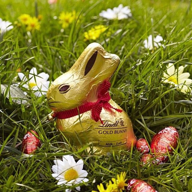 Instagram post by lindt chocolate usa lindtchocolate lindt chocolate usa lindtchocolate this weekend onlystagram photo websta lindt chocolateeaster giftalpinefood negle Images