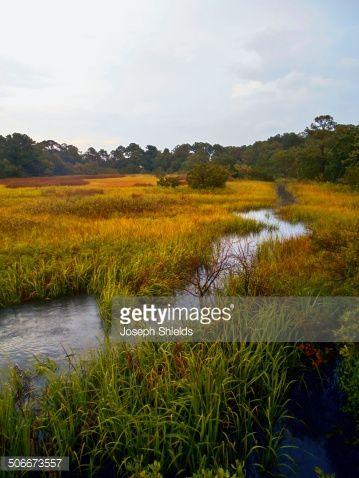 Marsh Landscape With Tidal Stream Landscape Photography Nature Landscape Landscape Photography