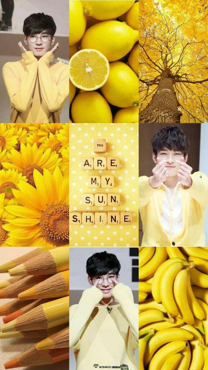 Wonwoo Moodboard Wonwoo Seventeen Svt Yellow Moodboard