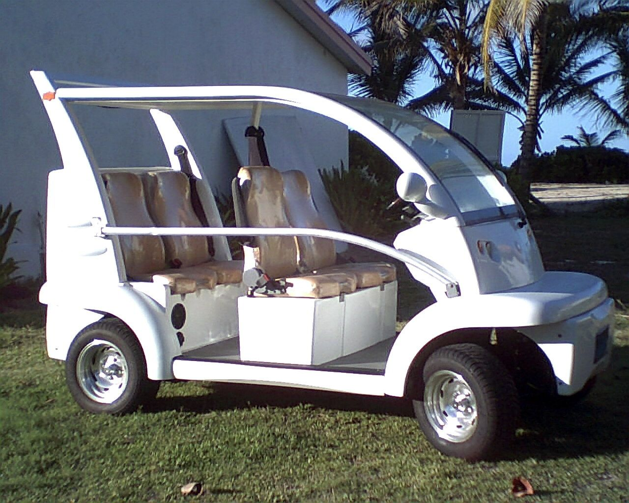 Lets Get This Golfcart For The River Lmao Whitney Wright Golf Carts Electric Golf Cart Electric Cars