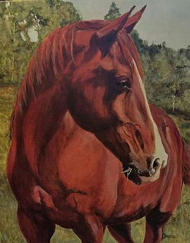 painted pet portaits by Darla Allred