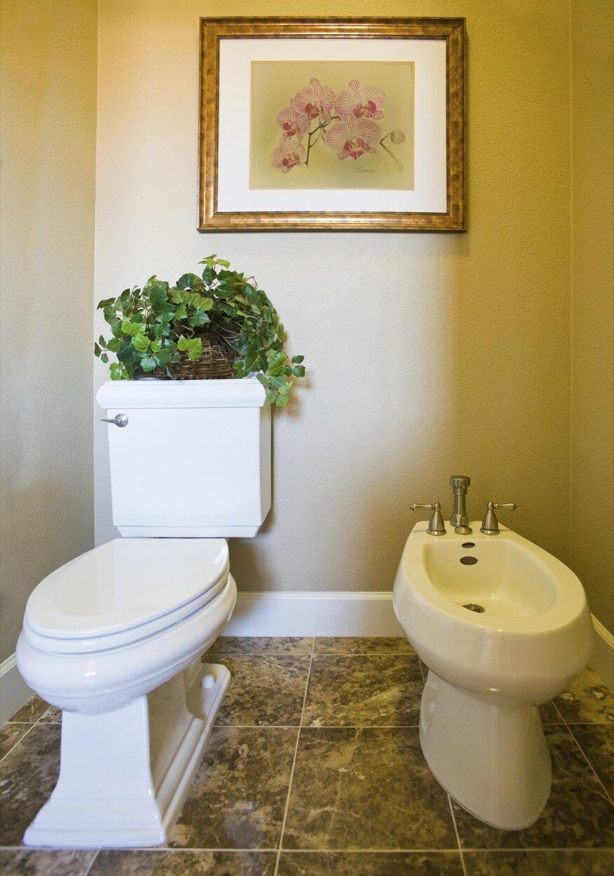 White Toilet And Bidet With Taupe Painted Walls Bidet Bathroom