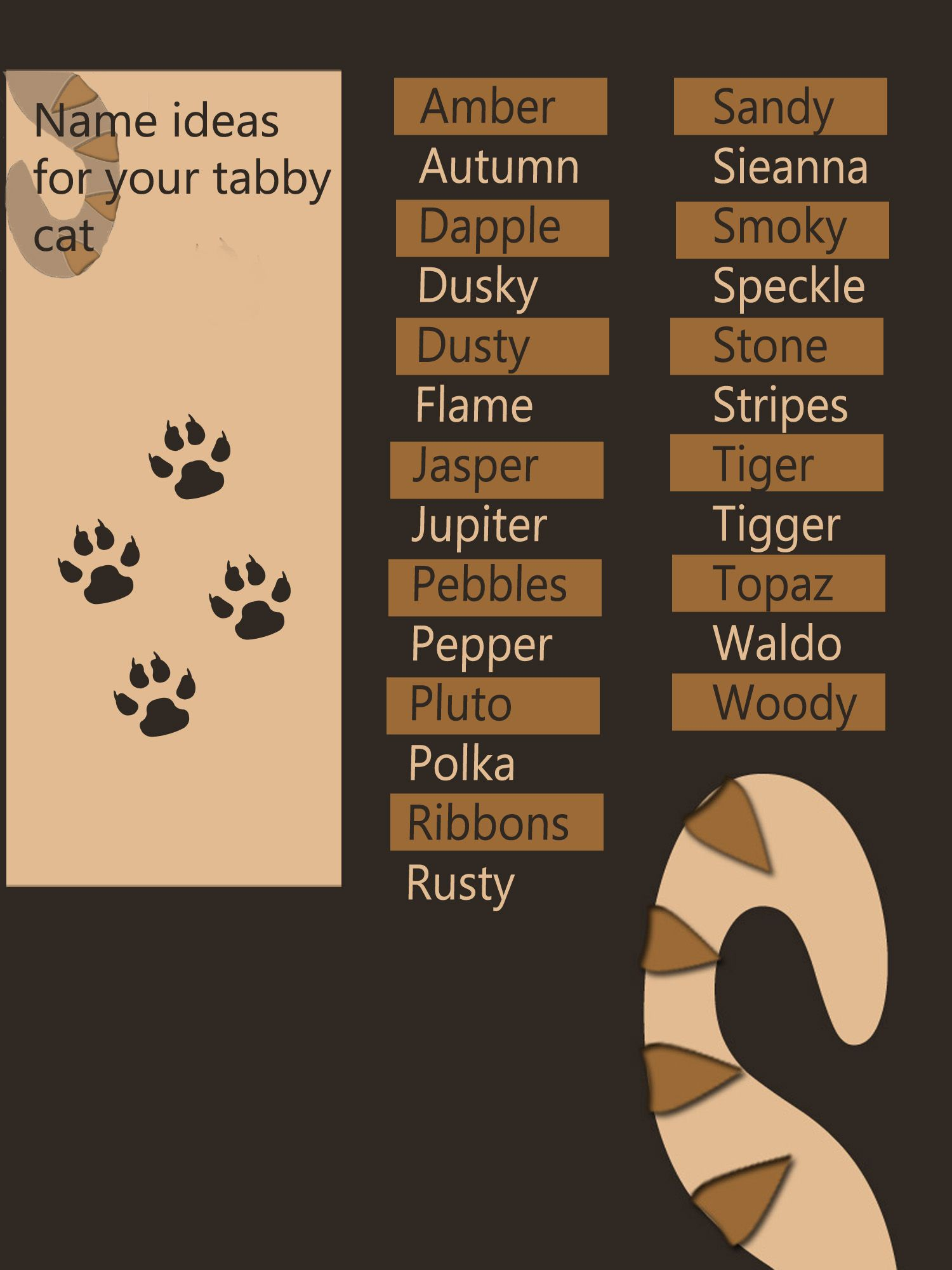 Tabby Cat Names The Unusual Markings Of A Tabby Cat Deserve A Special Name 25 Tabby Cat Names Tabby Cat Names Cat Care Tips Cat Care