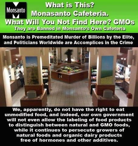 Monsanto (the ones who want US to eat GMO's) do NOT serve ANY GMO's in their OWN cafeteria.  The employees eat healthy, it appears.  Hmmm.