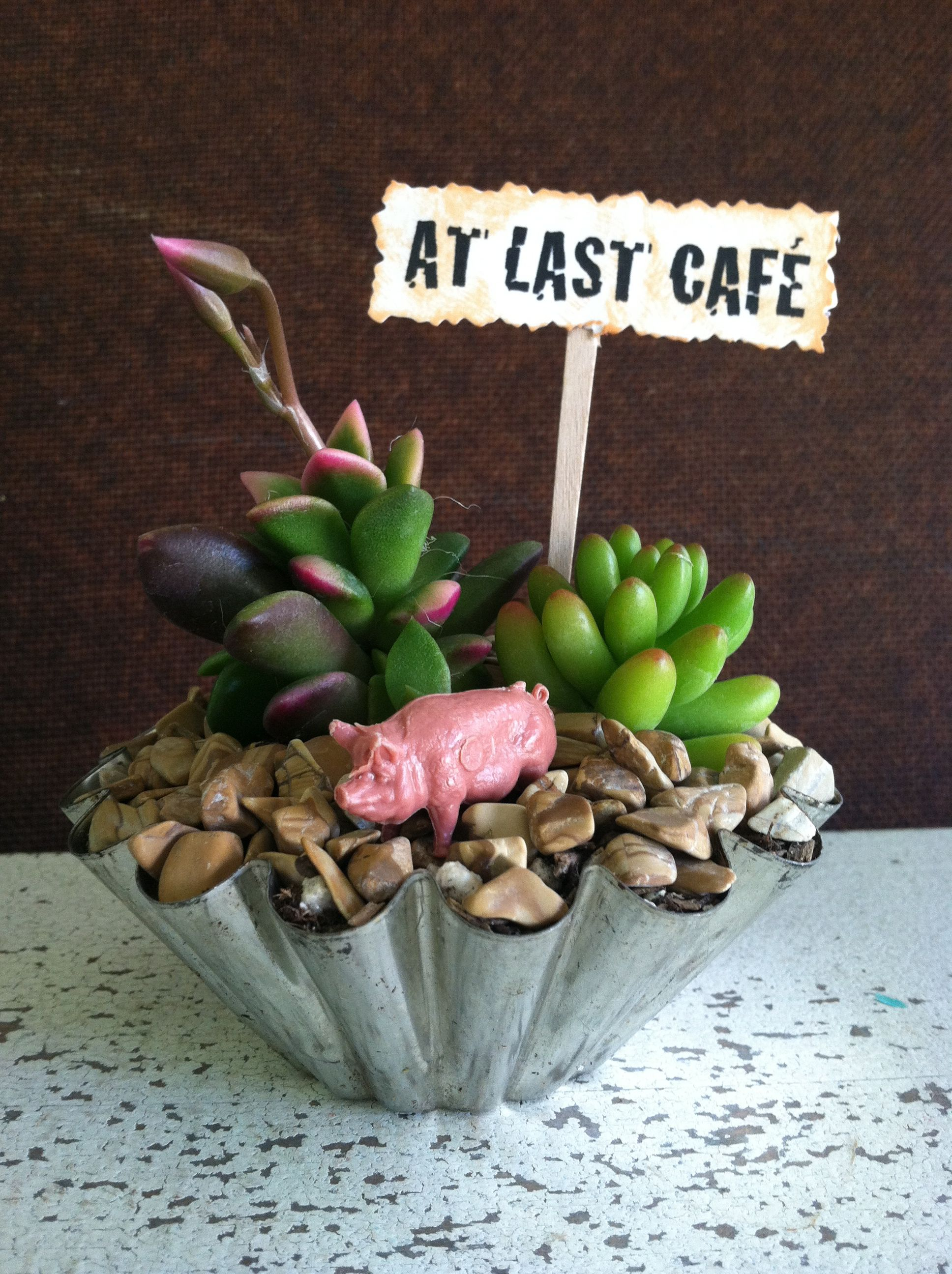 itty bitty succulent planters