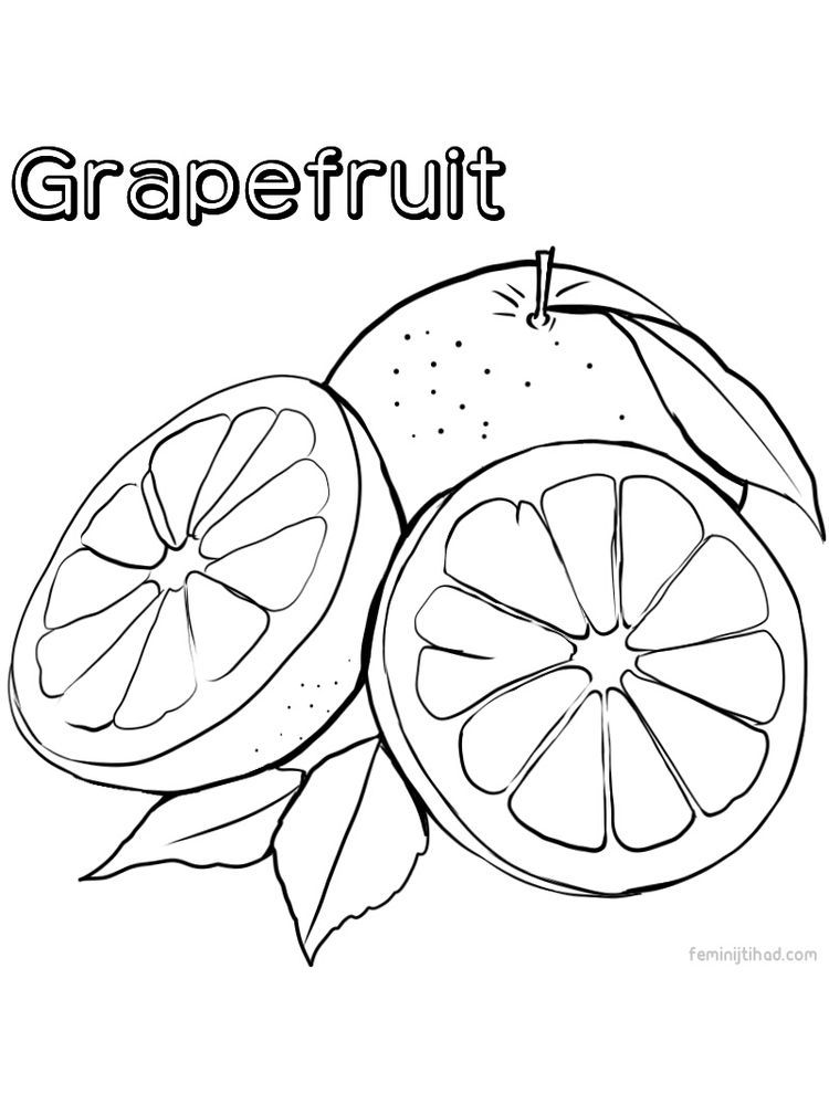 Grapefruit Coloring Images Grapefruit Coloring Page To Download