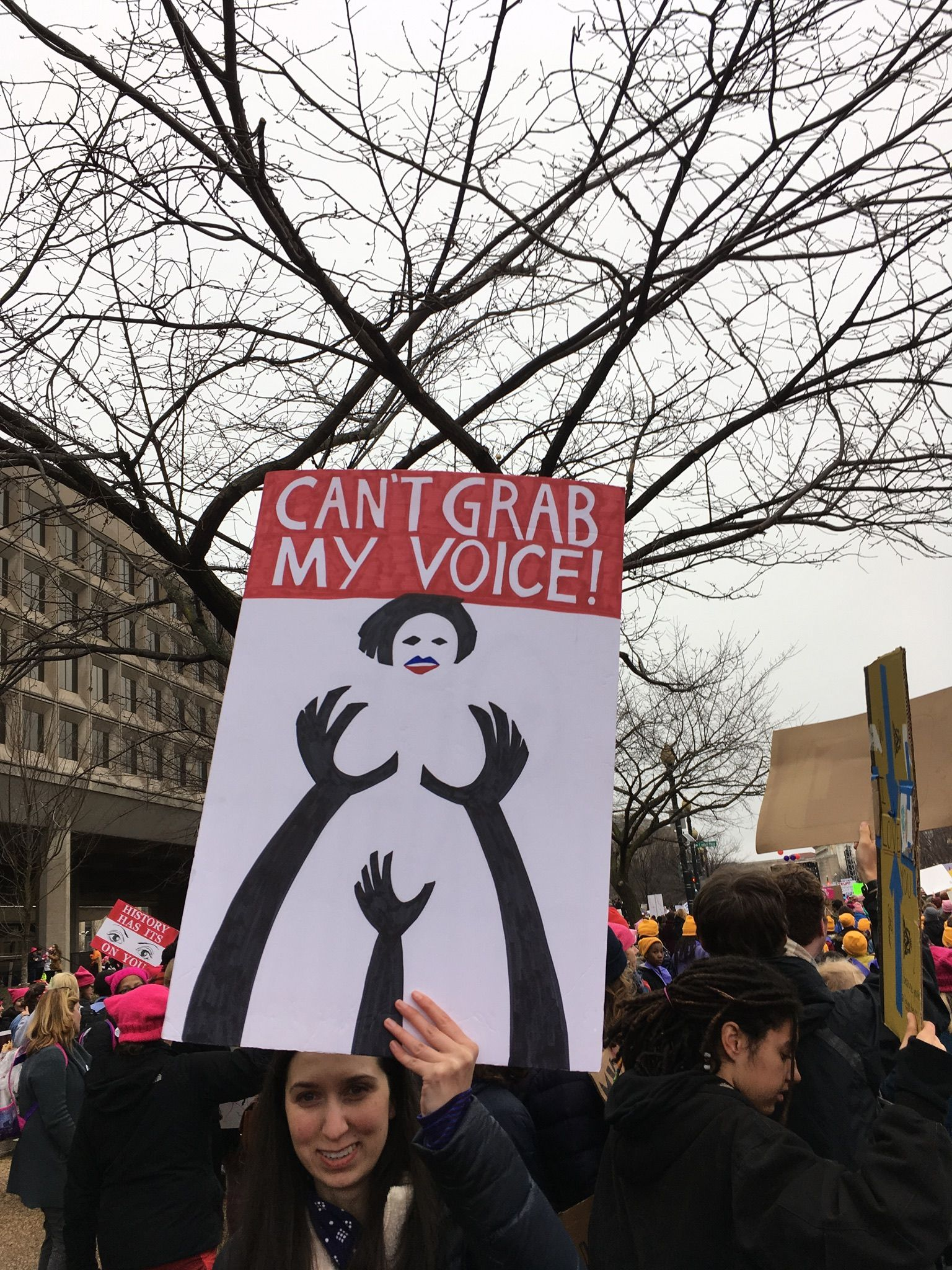 Can T Grab My Voice Protest Posters Womens March Posters Protest Signs