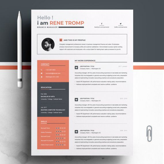 1 Page Professional Resume Template For