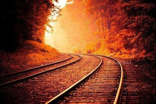 Red Way by Emerson Araujo