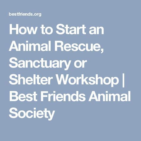How to Start and Run an Animal Sanctuary