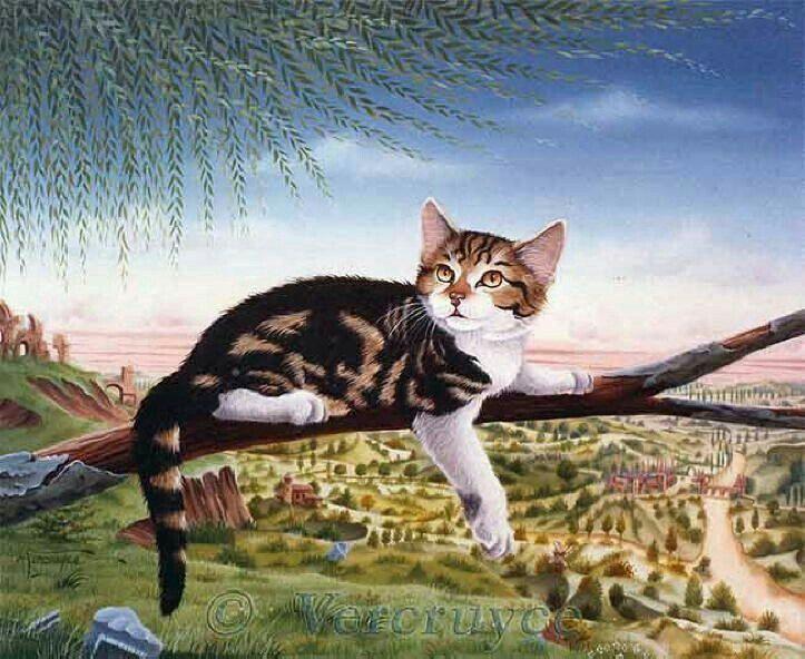 gattino sul ramo